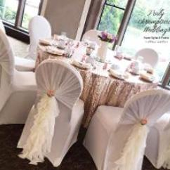 Ruffle Chair Sashes Swinging Hammock Truly Scrumptious Weddings Also Available Without Cover Underneath For 1 40 Diy Or 80 Set Up