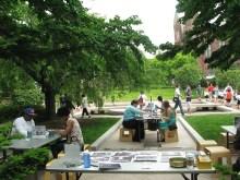 photo forInteractive Activity: Smithsonian Gardens Plant Passport