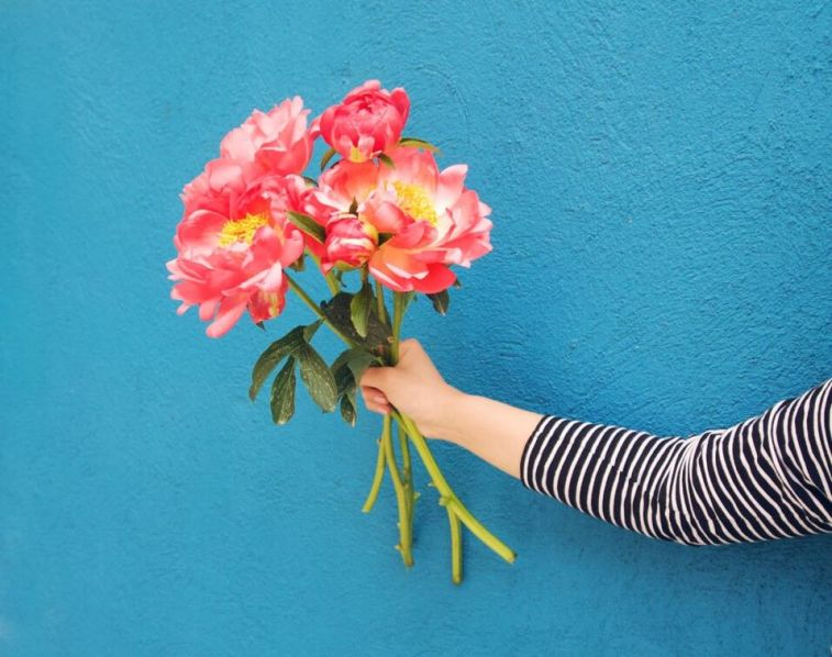 flores peonías