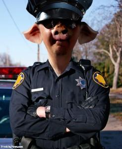 Pig-Policeman--66743