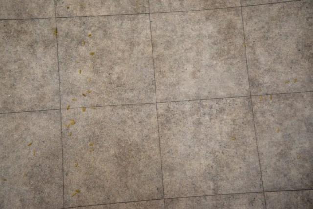 Stihl SE 33 clean hard floor