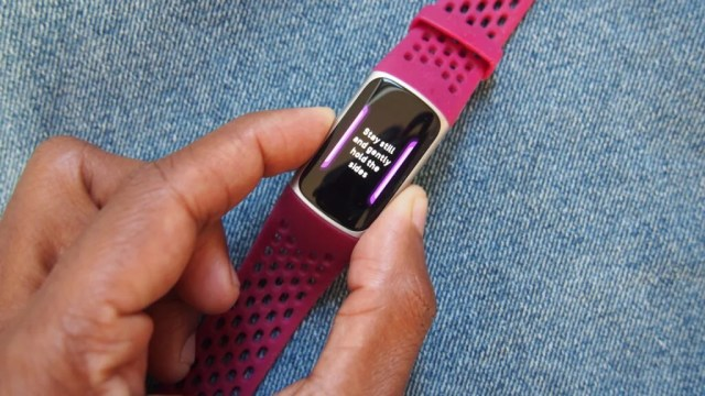 Fitbit Charge 5 EDA scan