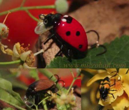Amostras insectos artificiais Microbait