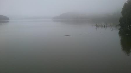 Barragem de Vendas Novas 2013