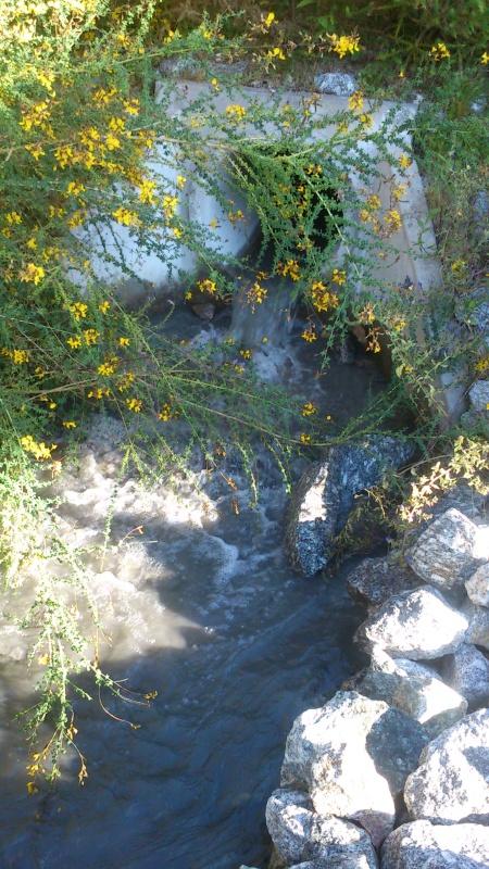 Cano de saída de água em Touvedo