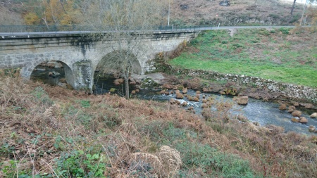 rio-alfusqueiro-campia-ponte-dezembro-2016