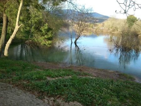 Rio Lima - condições caudal - foz Labruja - Março 2016