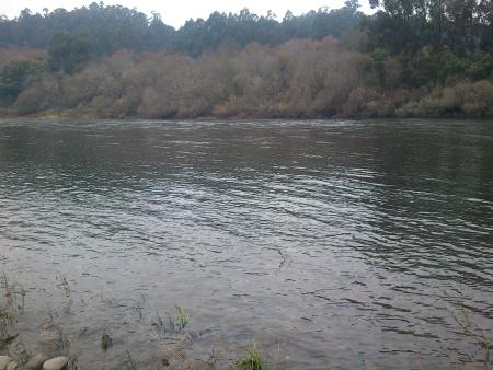 Rio Minho corrente Dezembro 2014