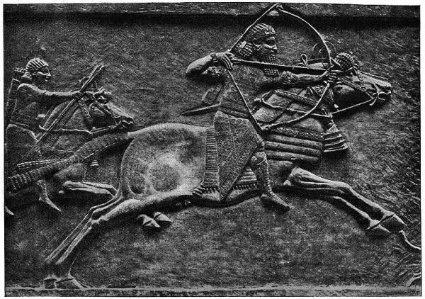 Horse of War