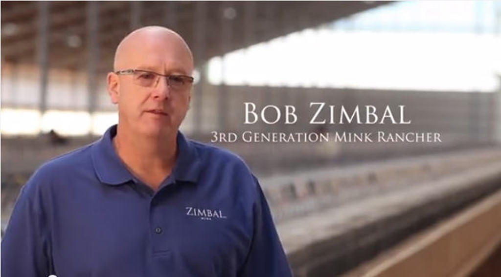 Zimbal mink farm in Wisconsin