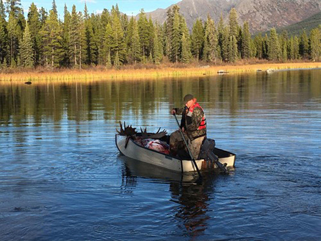 Moose fishing is not a regular trapline event