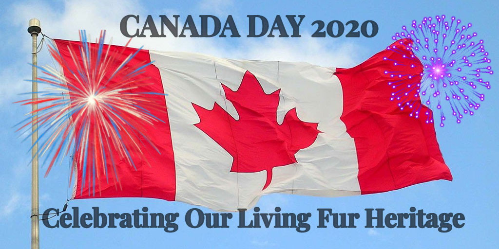 Canada Day 2020