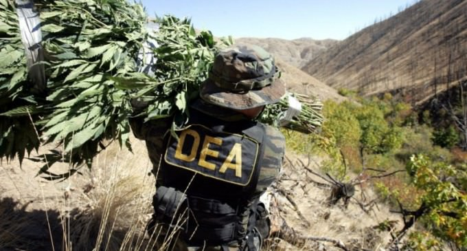 DEA Ejected from Bolivia, Drug Manufacturing Plummets