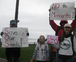gmo-activism
