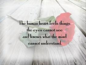 love-quotes-5
