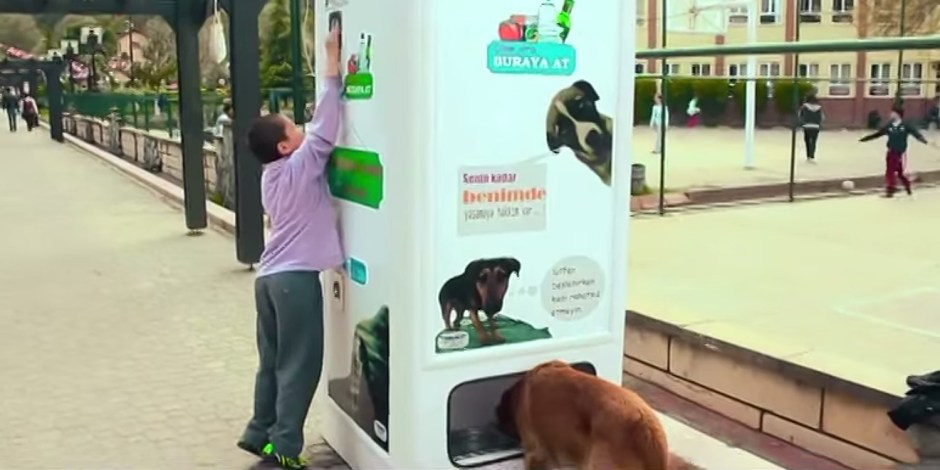 stray-dog-food-vending-machine-recycling-pugedon-fb