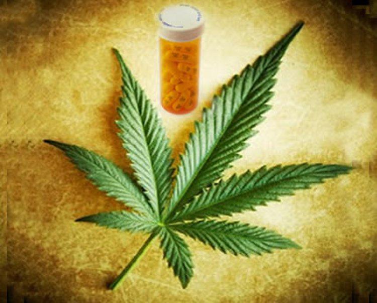 cannabis-drugs-comp-2