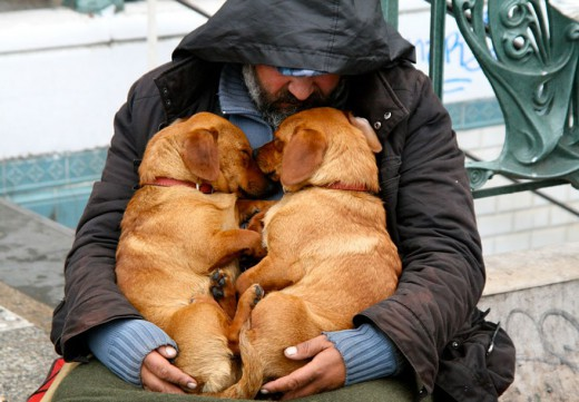 homeless-best-friends