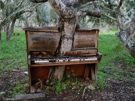 piano-533x400
