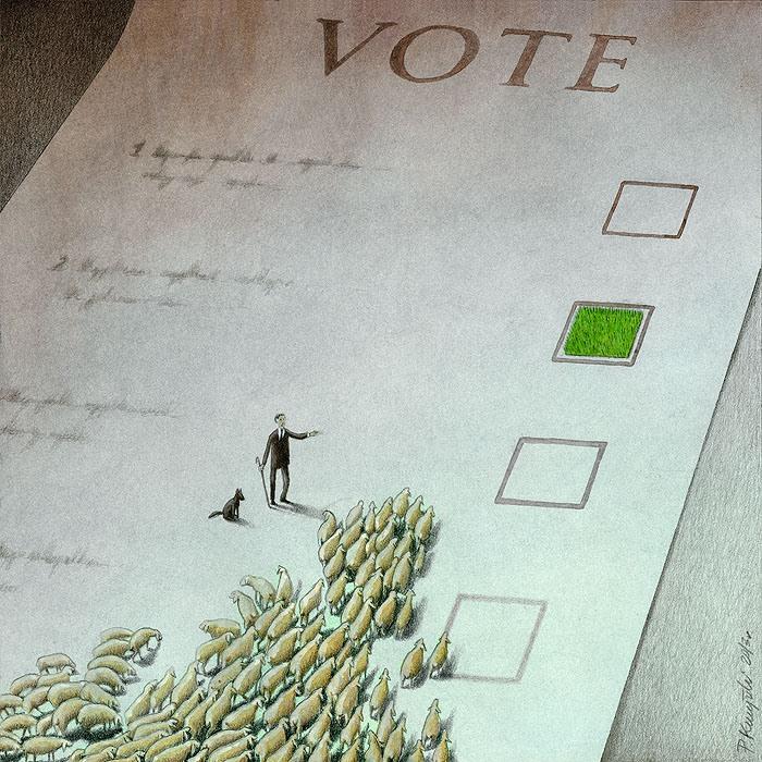 Pawel Kuczynski voting