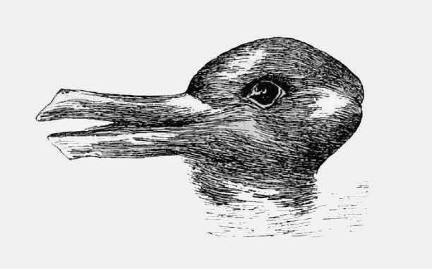 Duck_or_Rabbit