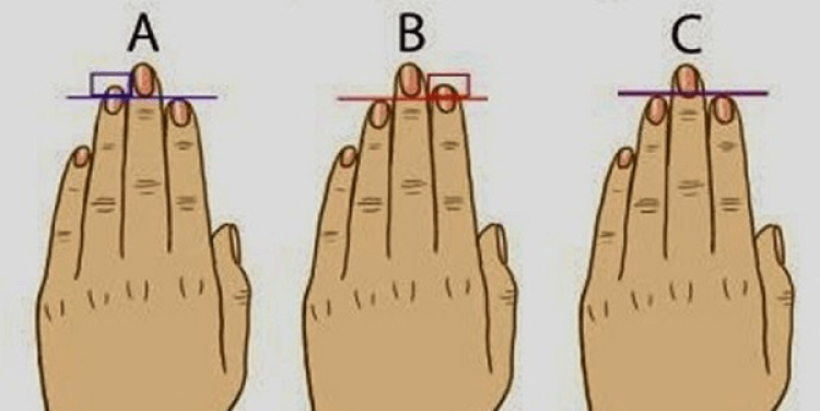 Finger Length Reveals About Your Personality