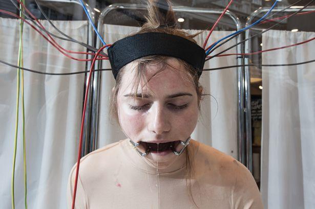 humans experiments_2