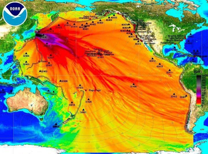 MSM-Pacific-Ocean