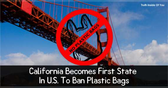 California Becomes First State In U.S. To Ban Plastic Bags