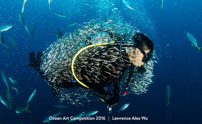 Τhese Beautiful Underwater Photographies Will Make You Want to Be a Diver.3