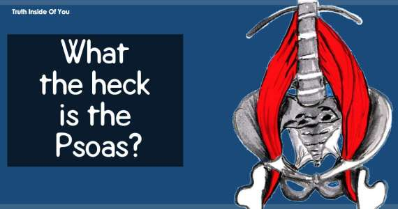 What the heck is the Psoas?