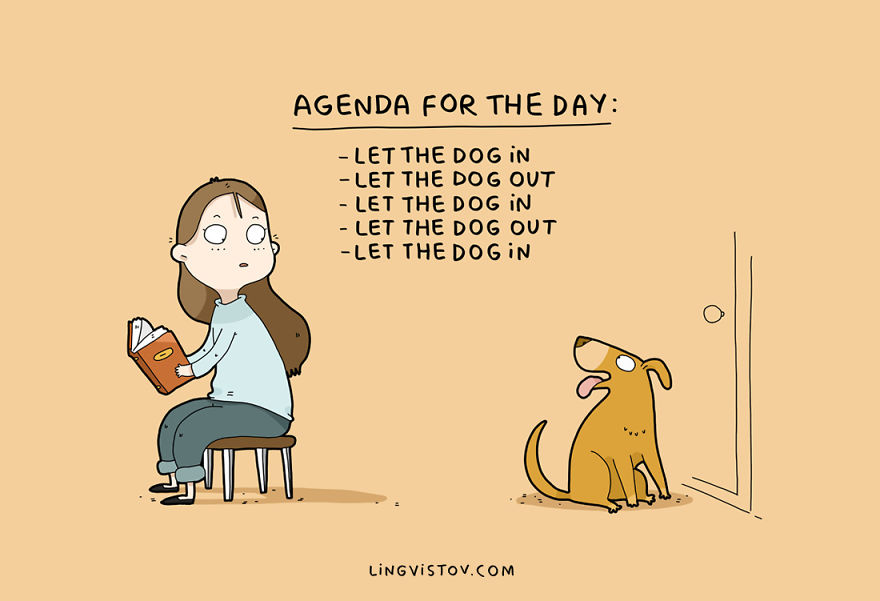 Agenda for the day: Let the dog in, let the dog out, let the dog in, let the dog out, let the dog in, etc.