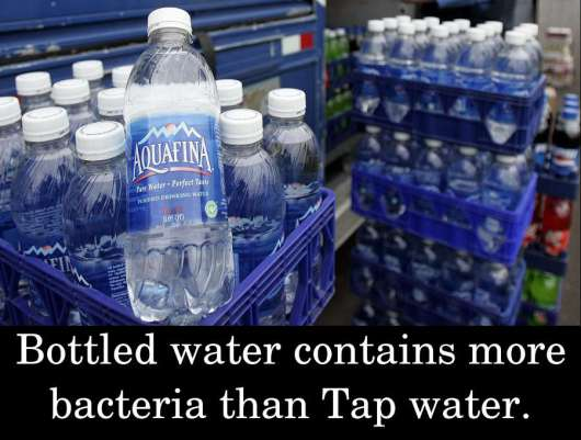 Bottled water contains more bacteria than Tap water.