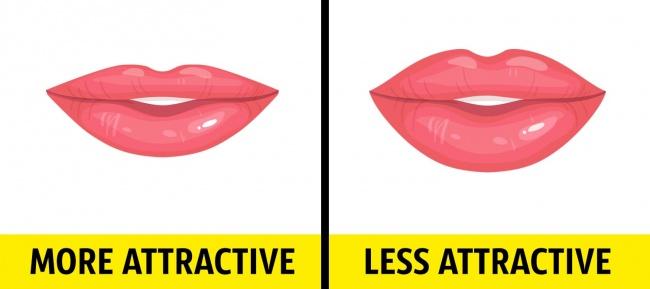 4. Lips
