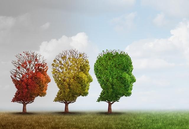 3. It helps cure dementia