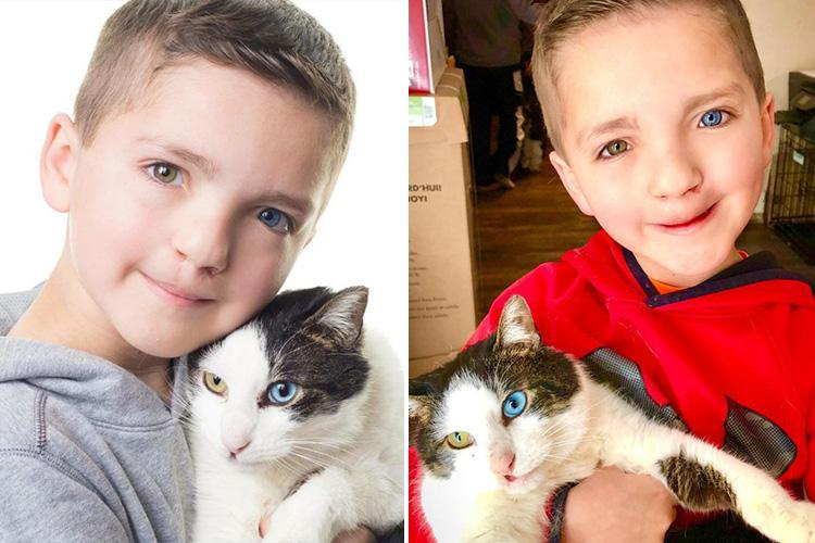 Bullied Boy Adopts Rescue Cat with Same Rare Eye Condition and Cleft Lip