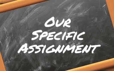 Our Specific Assignment – What Is It?