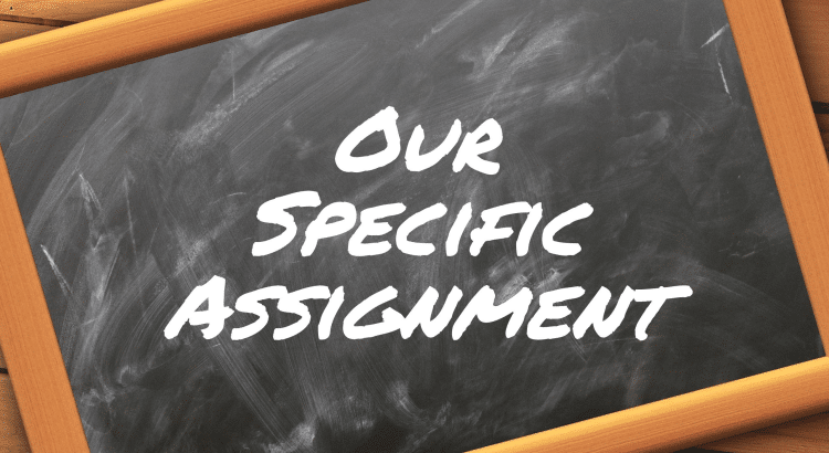 Our Specific Assignment