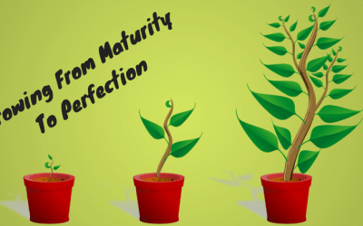Growing From Maturity To Perfection
