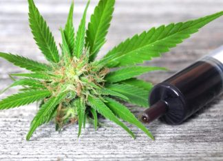 cbd oil for parkinson's disease