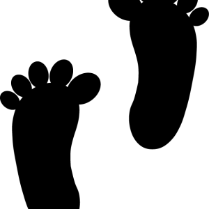 Fødder sort