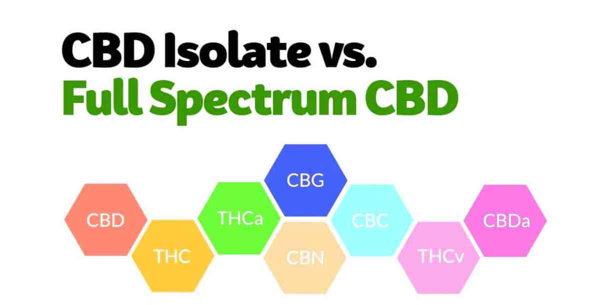 Image result for health benefits of cbd isolate