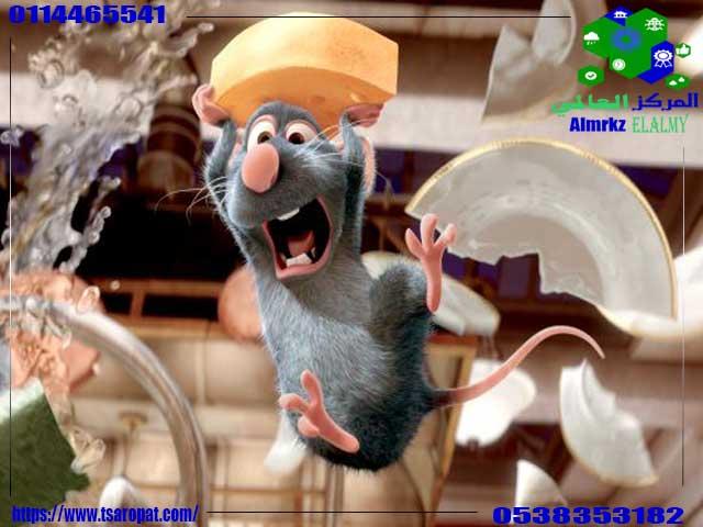 طرق التخلص من الفئران, طرق التخلص من الفئران, شركة المركز العالمي