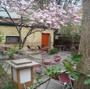 Check out Fat Cat Wine Bar's great back patio