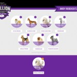 roddick's picks for… the westminster dog show