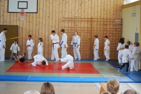 40 J Judo 2012 52