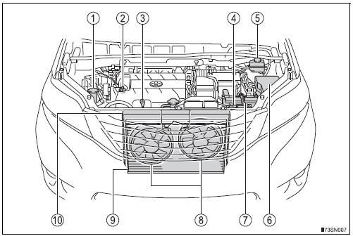 Toyota Sienna 2010-2019 Owners Manual: Engine compartment