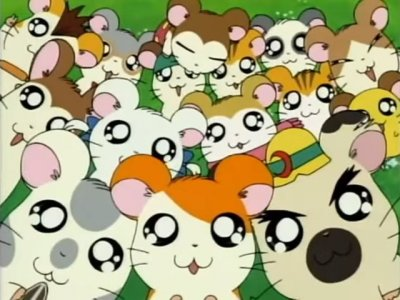 Hamtaro 2000 TV Serie Anime