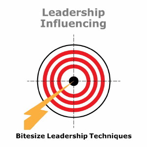 Bitesize Leadership Techniques – Leadership Influencing
