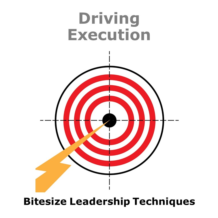 Bitesize Leadership Techniques – Driving Execution